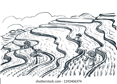 Rice terrace fields landscape, vector sketch illustration. Asian agriculture and harvesting vintage background. China rural nature view.