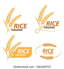 Rice , wheat , barley and oat label , logo vector illustration