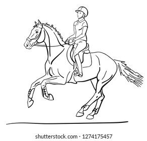 Rider and horse is cantering. Vector sketch.