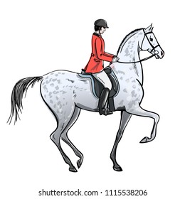 Rider man and dapple grey horse on white. Horseman in red jacket on stallion. England equestrian sport style. Hand drawing vector cartoon illustration.