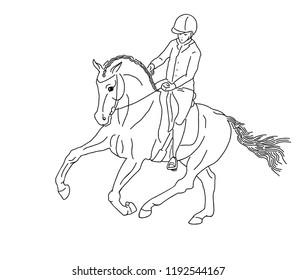 A rider on a horse. Equestrian, horsemanship.