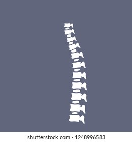 A ridge of bone. Internal human organs. Medical element of anatomy. Back x-ray. White spine and vertebral column on dark blue background. Incorrect posture.