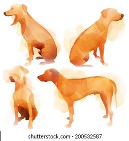 Ridge-back Dog Set