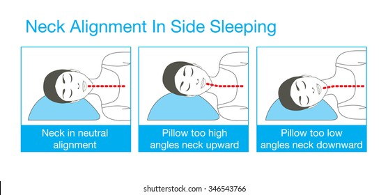 diagram of sleeping correct spine sleeping position images  stock photos   vectors  correct spine sleeping position images