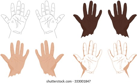 Right and left hands with lines of life, health, success, career and other. Vector illustration