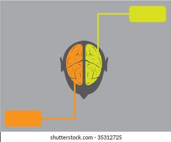 Right N Left Brain of Human Species