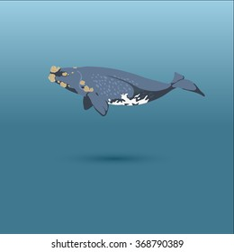 Right Whale into the sea / vector illustration / icon /