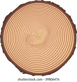 Rings on a tree cut form the child-germ