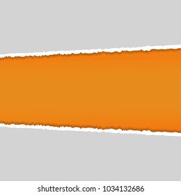 Rip Gray paper and Orange background with space for text ,Vector illustration