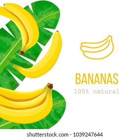 Ripe Bananas and palm leaves with text 100 percent natural. Vertical stripe label. free space. Vector illustration with tropic motif. Concept idea for logo, tag, banner, advertising, prints, wrapping