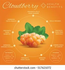 Ripe cloudberry health benefits infographics. Creeping raspberry with yellow orange berries. Bakeapple or salmonberry icon.Vector illustration.