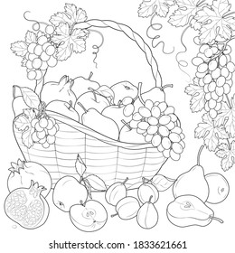 Fruit Basket Coloring Page Images Stock Photos Vectors Shutterstock