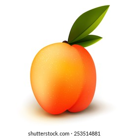 Ripe isolated vector realistic peach fruit with green leaves