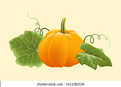 Ripe orange pumpkin with leaves and tendrils isolated on light yellow background. Vector illustration