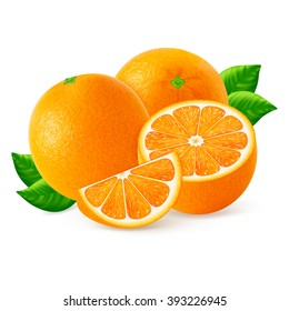 Ripe oranges fruits and slices with leaf isolated on white background. Realistic vector illustration.