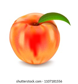 Ripe peach isolated on white background. Vector illustration.