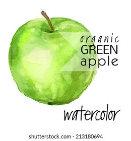 ripe picturesque (isolated on white background) green apple - brush and watercolor hand painted vector illustration