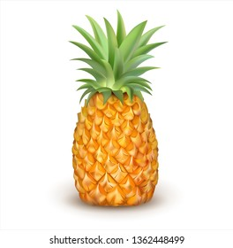 Ripe pineapple isolated on white. Vector illustration.