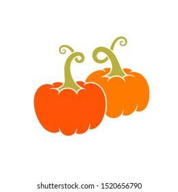 Ripe pumpkin. Happy Halloween. Isolated pumpkin on white background. Bright autumn