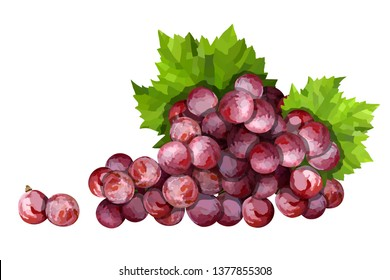 Ripe red grape. Pink bunch with leaves vector illustration