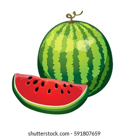 ripe watermelon with a slice cut isolated on white background. vector illustration, part of collection