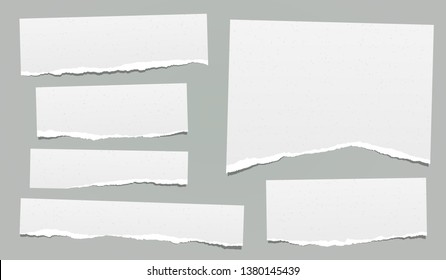 Ripped note, notebook grainy paper strips stuck on grey background. Vector illustration