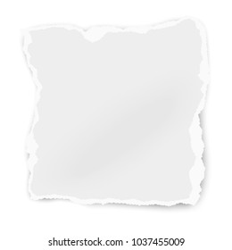 Ripped paper tear isolated on white background. Vector template paper design.
