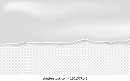 ripped paper vector on transparent background
