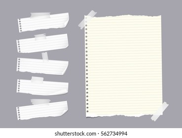 Ripped ruled note, notebook, copybook paper sheet, strips stuck with sticky tape on gray background