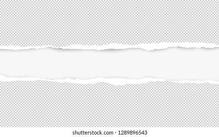 Ripped squared grey horizontal paper for text or message are on white background. Vector illustration