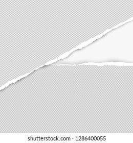 Ripped squared grey paper for text or message are on white background. Vector illustration