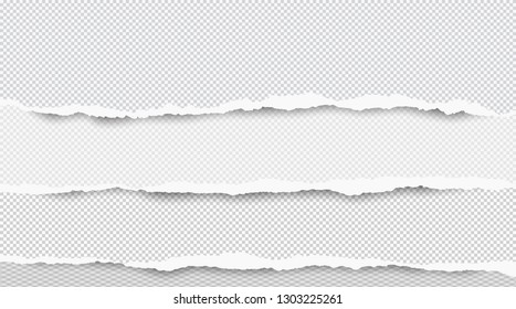 Ripped squared horizontal white paper strips for text or message are on white background. Vector illustration