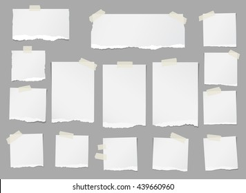 Ripped white blank note paper are stuck on gray background