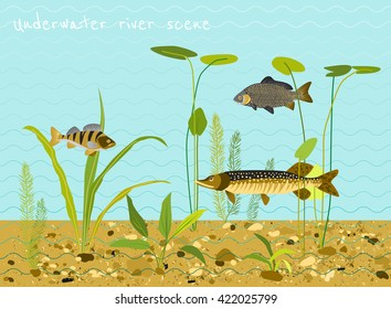River or lake underwater world. Water plants, fish. Flat vector background.