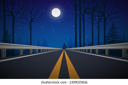 road in the forest in night