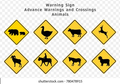 Road sign. Warning. Advance Warnings and Crossings. Animals.  Vector illustration on transparent background