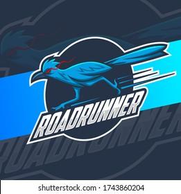 roadrunner bird mascot logo design