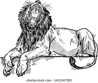 A roaring lion bearing its fangs. Hand drawn vector illustration.