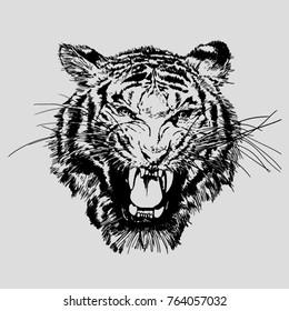 Roaring tiger face. Vector illustration