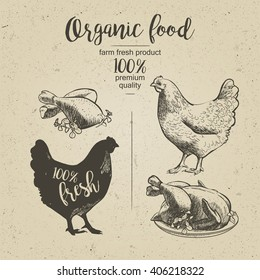 Roasted Chicken. Design for farming industry, original packaging and other types of bio product business. Engraved Chicken. Vector illustration in vintage style