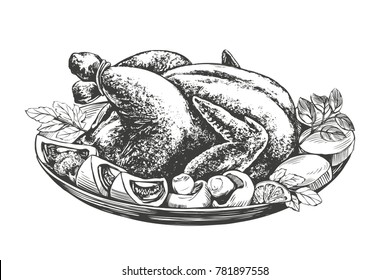 Roasted turkey, chicken,with ingredients hand drawn vector illustration realistic sketch