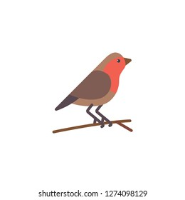 robin bird icon