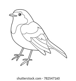 Robin bird outline