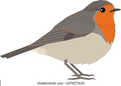 Robin bird Vector illustration Isolated object set