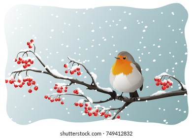 Robin perched on branch with red berries on snowflakes background