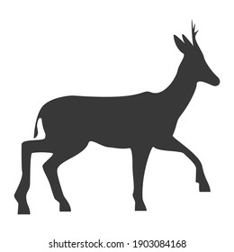 Roe deer silhouette, icon. Vector illustration on a white background.