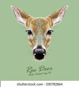 Roe Deer wild animal face. Vector European cute Doebuck head portrait. Realistic fur portrait of wild forest deer isolated on green background.