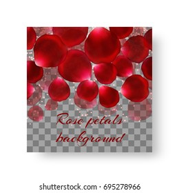 Romantic background of brochure with flying rose petals for congratulations on Valentine's Day