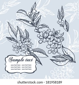 Romantic card with neroli. Illustration for greeting cards and other printing and web projects.