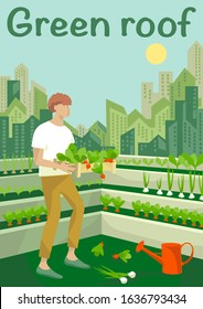 Rooftop urban farming, gardening or agriculture. A man planting radish, onions, greens  on the rooftop with a city tower buildings on the background